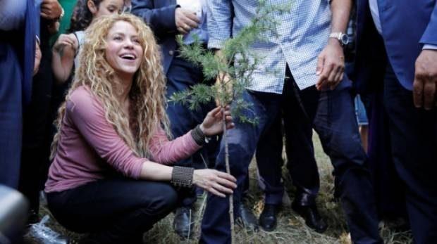 Shakira plants a cedar tree during her visit to Tannourine Cedars Reserve, in Tannourine, Lebanon